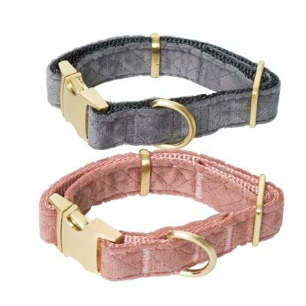 Hundhalsband Pet Club Premium